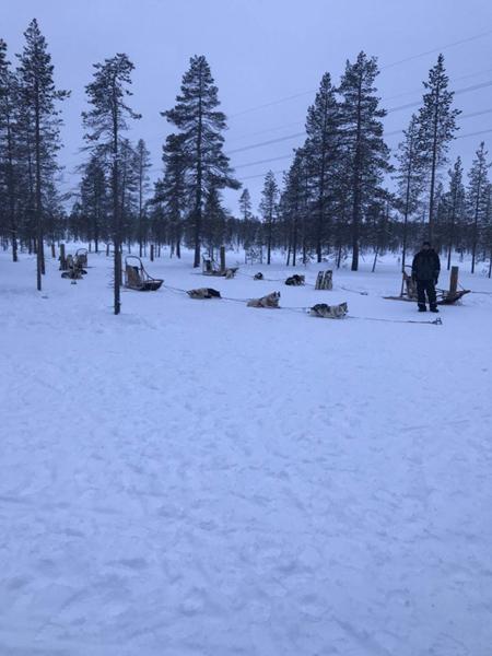 《芬兰瑞典-雪地项目训练6天极光团》